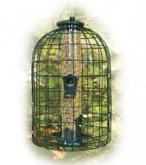 cat proof bird feeder