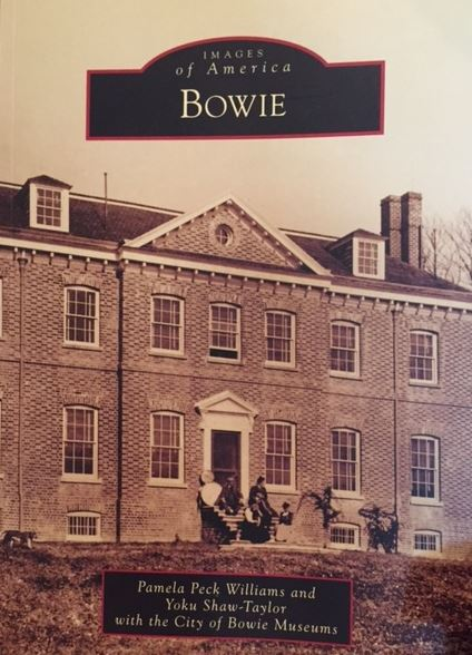 cover of new bowie book (2)